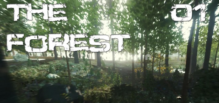 The Forest #01